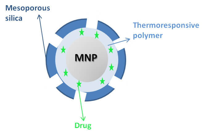 Scheme of magnetic nanoparticle coated with a thermoresponsive polymer and mesoporous silica encapsulating a drug