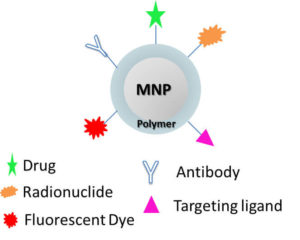 Scheme of polymeric magnetic nanoparticle functionalized.